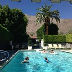 Foto van Viceroy Palm Springs