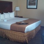 Photo de BEST WESTERN Jacksonville Airport
