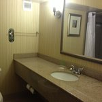 Φωτογραφία: Holiday Inn Richmond South-Bells Road