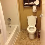 Photo de Hampton Inn & Suites Rochester/Henrietta