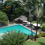 jardin tropical, piscine et bar
