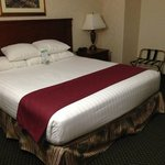 Foto de Drury Inn & Suites Findlay