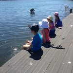 The kids enjoyed fishing & seeing the dolphins & Pelicans from the boardwalk