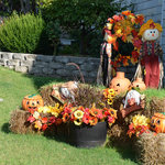 Fall/Halloween decorations out early; August 2012