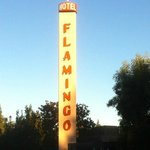 The Flamingo Tower
