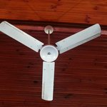 Dirty ceiling fan!!!