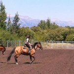 Going into the barrel racing.