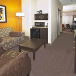 Photo de Holiday Inn Hotel and Suites