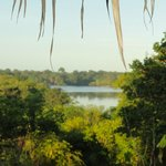 Foto di Tariri Amazon Lodge