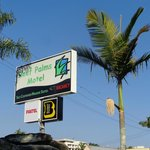 Blue sky, palm trees and reef palm Motel...perfect combination