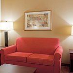 Φωτογραφία: Holiday Inn Express Hotel & Suites Amarillo South