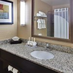 Holiday Inn Express Hotel & Suites Detroit-Novi Foto