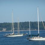 Sailboats in Port Townsend