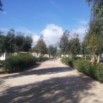 Photo de Camping Village Laguna Blu