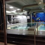 The glass bottomed swimming pool