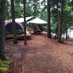 Bild från Mount Desert Campground