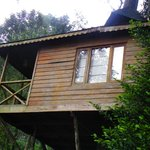 The Misty Munnar Tree Houseの写真