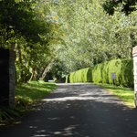 The secluded driveway into the grounds