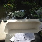outdoor bathtub w coy fish pond