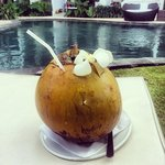 Coconut by the Pool