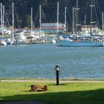 Φωτογραφία: Winchester Bay RV Resort