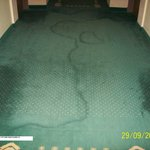 State of Corridor Carpets to Rooms - 1