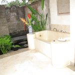 outdoor shower / tub / indoor shower door