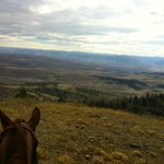 toni (my horse) and i, checking out an amazing view