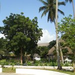 Foto de Chwaka Bay Resort