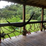 Hummingbird Guest Lodge & Hostel의 사진