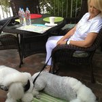 Mom with the dogs on the community patio