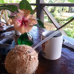 Coconut Love Tropical Terrace Breakfast