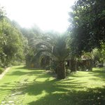 Santa Tecla olive grove Accommodations Foto