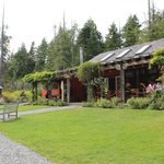 Φωτογραφία: The Ecolodge at the Tofino Botanical Gardens