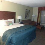 Photo de La Quinta Inn & Suites Dothan