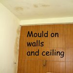 Mould on Walls and Ceilings (and Bedhead as well)