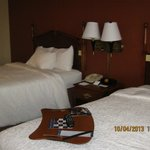 Foto Hampton Inn Birch Run/Frankenmuth