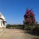 Photo of Agriturismo Sant' Andrea
