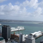 Фотография Auckland Harbour Oaks
