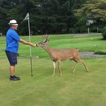 Husband playing golf with 'BOB'