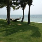 One of the hammocks on the beach