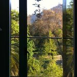 View from the room to the Parque Forestal
