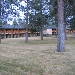 Foto BEST WESTERN Ponderosa Lodge