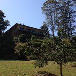 Foto de Avocado Sunset Bed and Breakfast