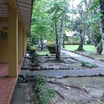 Foto de La Foresta Nature Resort
