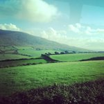 View of the rolling landscape, on the way into Dingle