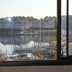 Billede af Holiday Inn Solomons Conference Center and Marina