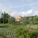 Odina all that is Tuscany