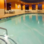 Φωτογραφία: Holiday Inn Hotel & Suites Stockbridge/Atlanta I-75