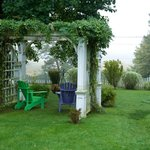 Bilde fra The Tulip Tree Bed & Breakfast